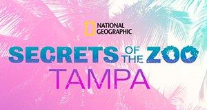 Zoogeflüster: Tampa – Bild: National Geographic