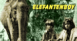 Elefantenjunge