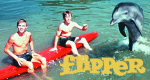Flipper – Bild: ZDF