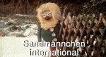 Sandmännchen international