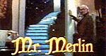 Mr. Merlin