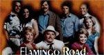Flamingo Road