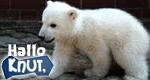 Hallo Knut! – Bild: RBB/Thomas Ernst