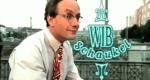 Die WIB-Schaukel