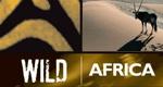 Wildes Afrika – Bild: BBC