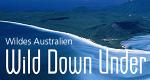 Wildes Australien – Bild: BBC