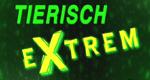Tierisch Extrem – Die Top 10…