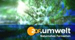 ZDF.umwelt – Bild: ZDF