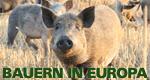Bauern in Europa – Bild: megaherz