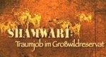 Shamwari – Traumjob im Großwildreservat