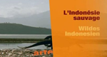 Wildes Indonesien – Bild: arte (Screenshot)