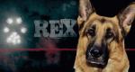 Kommissar Rex – Bild: Beta Film