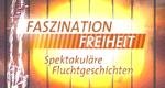 Faszination Freiheit
