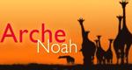 Arche Noah – Bild: 3sat