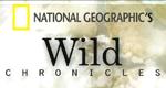 Wild Chronicles