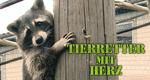 Tierretter mit Herz – Bild: Super RTL