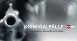 Kriminalfälle - Schweizer Verbrechen im Visier – Bild: SF DRS