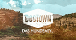 DogTown – Das Hundeasyl – Bild: National Geographic Channel/Screenshot