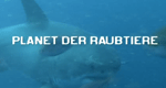 Planet der Raubtiere – Bild: National Geographic Channel