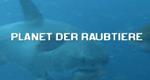 Planet der Raubtiere – Bild: National Geographic Channel