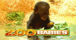 Zoo-Babies – Bild: ARD
