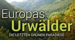 Europas Urwälder – Bild: ZDF / © MedienKontor/Ralf Kaiser