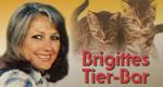 Brigittes Tier-Bar