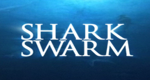 Shark Swarm - Angriff der Haie – Bild: RHI Entertainment