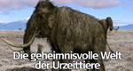 Die geheimnisvolle Welt der Urzeittiere – Bild: SuperRTL