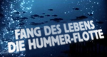 Fang des Lebens – Die Hummer-Flotte – Bild: DMAX