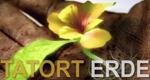 Tatort Erde – Bild: zdf_neo (Screenshot)
