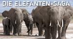 Die Elefanten-Saga – Bild: Off the Fence