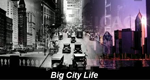 Big City Life – Bild: Discovery Channel