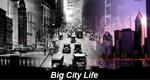 Big City Life – Bild: Discovery Channel