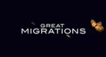 Great Migrations - Das große Wunder der Tierwanderungen – Bild: National Geographic Channel