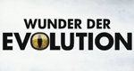 Wunder der Evolution – Bild: The History Channel