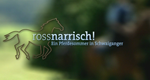 Rossnarrisch! – Ein Sommer auf Schwaiganger – Bild: BR/megaherz gmbh/Nicole Hillgruber