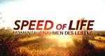 Speed of Life - Momentaufnahmen des Lebens – Bild: Discovery Communications, LLC.