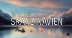 Wildes Skandinavien – Bild: arte/NDR/Jan Haft
