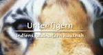 Die geheime Welt der Tiger – Bild: ARD (Screenshot)