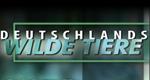 Deutschlands wilde Tiere – Bild: Ottonia Media GmbH