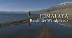 Himalaya – Reich des Windpferds – Bild: ZDF/Hajo Bergmann