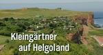 Kleingärtner auf Helgoland – Bild: NDR