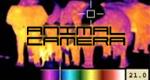 Animal Camera