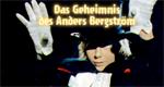 Das Geheimnis des Anders Bergström
