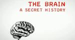 Grausam oder heilsam: Experimente am Gehirn – Bild: BBC