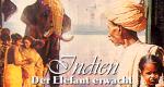 Indien – Der Elefant erwacht