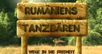Rumäniens Tanzbären – Wege in die Freiheit – Bild: Animal Planet (Screenshot)