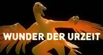 Wunder der Urzeit – Bild: NGC Europe Limited