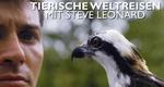 Tierische Weltreisen mit Steve Leonard – Bild: BBC